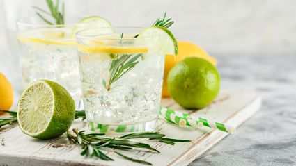 Study finds gin and vodka could prevent hay fever this summer!