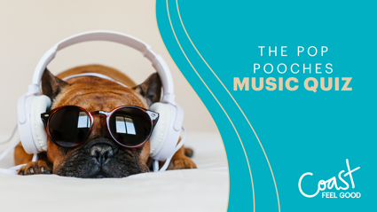 The Pop Pooches Music Quiz