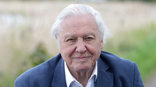 Sir David Attenborough leaves Instagram two months after breaking social media record