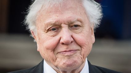 David Attenborough surprises four-year-old boy with heartwarming handwritten response to letter